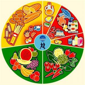 Rueda de los alimentos.